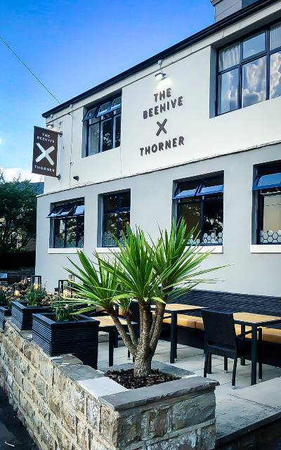 Matt Healy Beehive Thorner outside seating