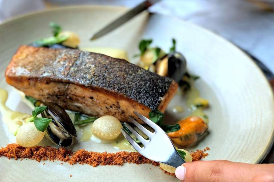 Sea Trout Dish Harvey Nichols Leeds