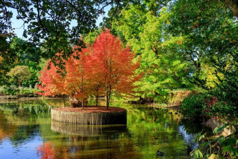 RHS Harlow Carr Gardens