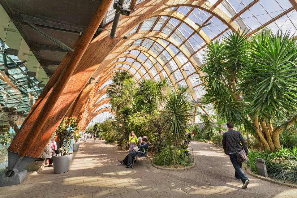 Things to do in Sheffield Winter Gardens