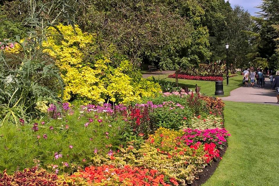 Valley Gardens Things to do in Harrogate