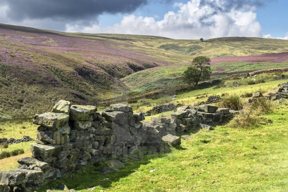 Bronte Country Yorkshire Walks
