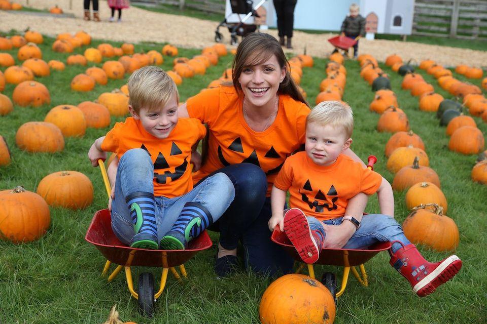 cannon hall farm - pumpkin picking